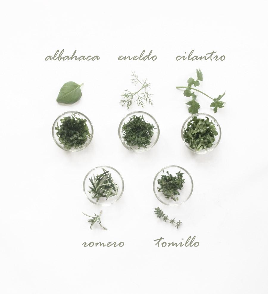 Cómo conservar plantas aromáticas